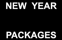 packages-newyear