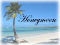 honeymoon_logo14